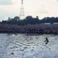Concerto Bob Marley, Londra, Crystal Palace Concert Bowl, 1980 - 3185
